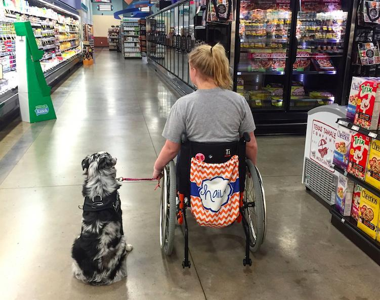 how to get dog to be a service dog