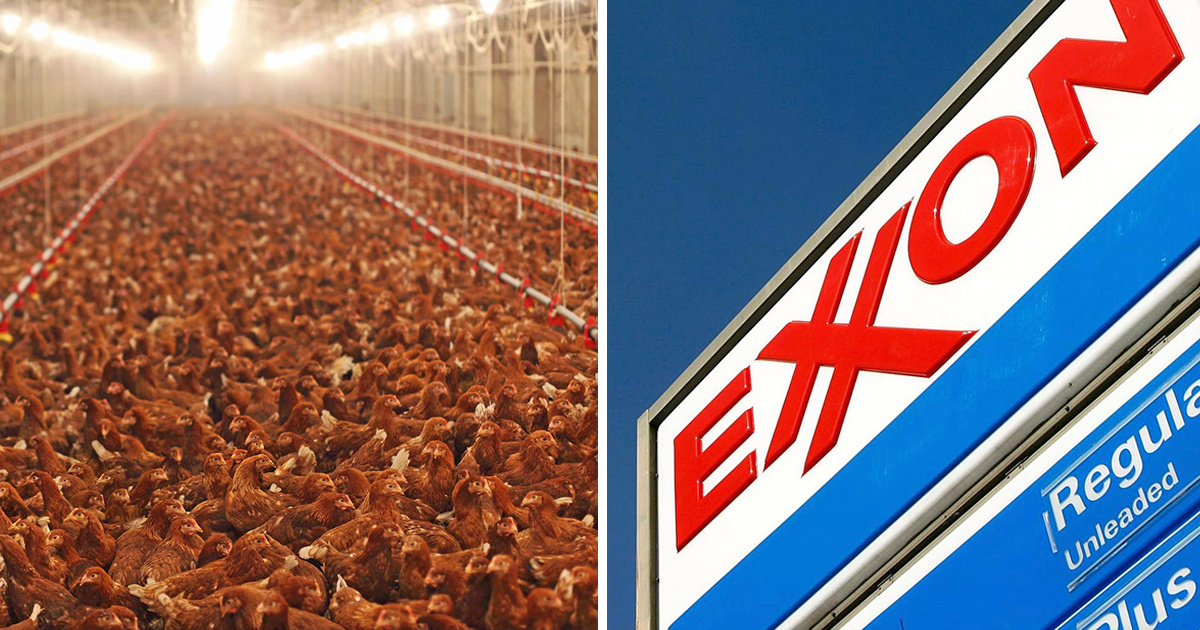 photo image Greenhouse Gas Emission Giants: Why Tyson Foods Rivals Exxon
