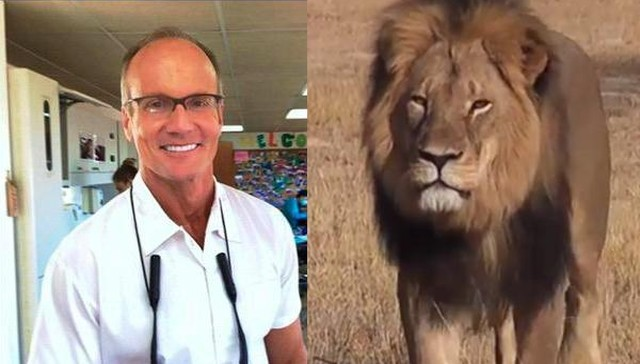 18-people-who-killed-defenseless-lions.