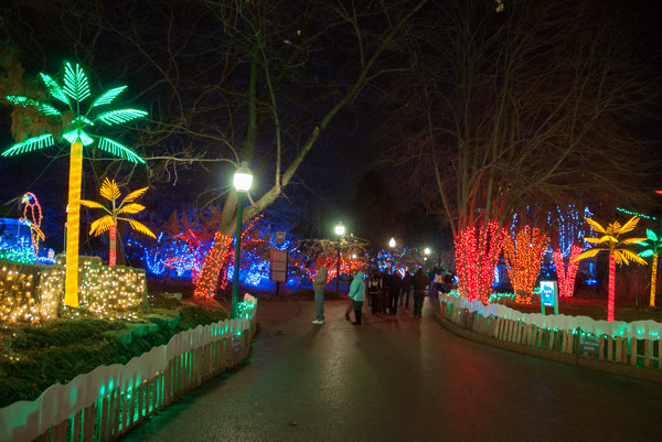 St Louis Zoo Christmas Lights