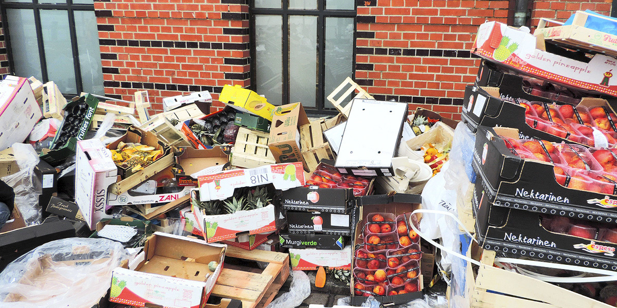 Resolve to Become a Food Waste Warrior in 2018