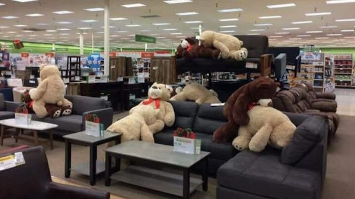 Photo Nsfw Naughty Teddy Bears Caught In Sex Positions In