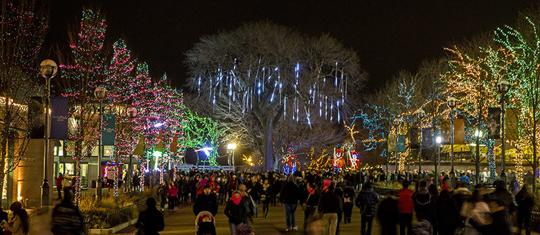 Naperville Christmas Lights