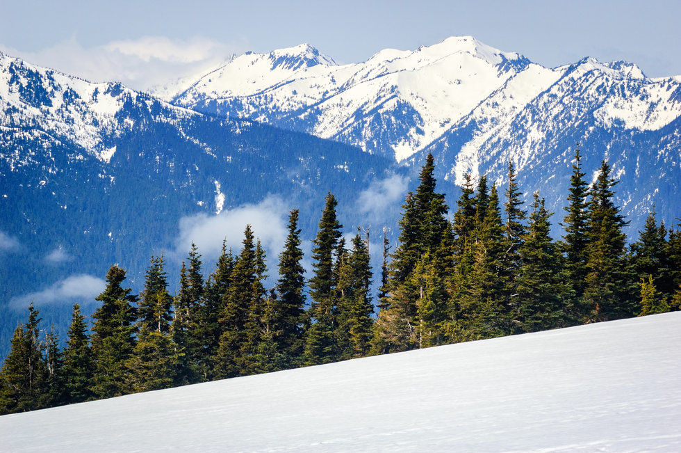 Mountain view of Olympic Peninsula during the winter