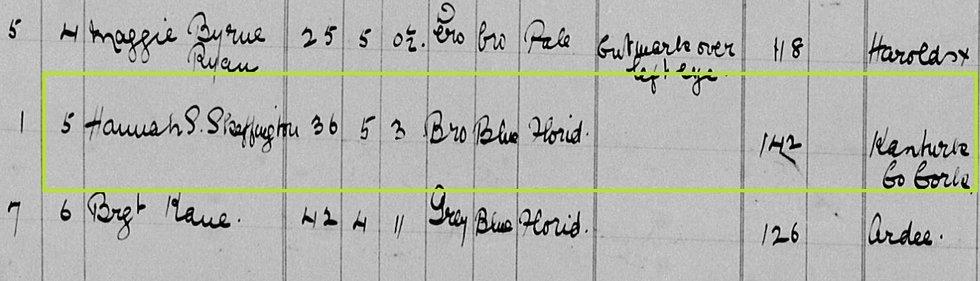 Hannah Sheehy Skeffington Prison Record