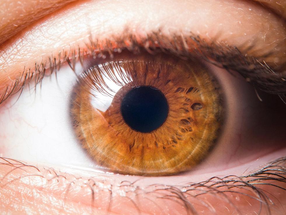 true hazel eye color
