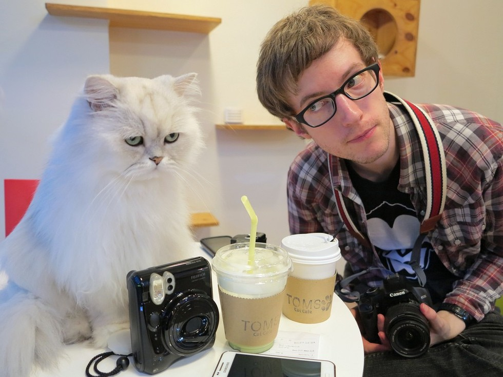 cat cafes can be a force for good here s how