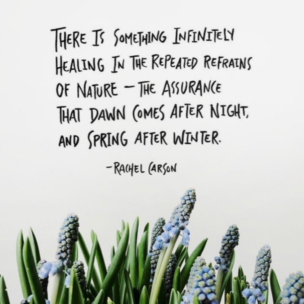 9 Spring Poems For Self Love Healing