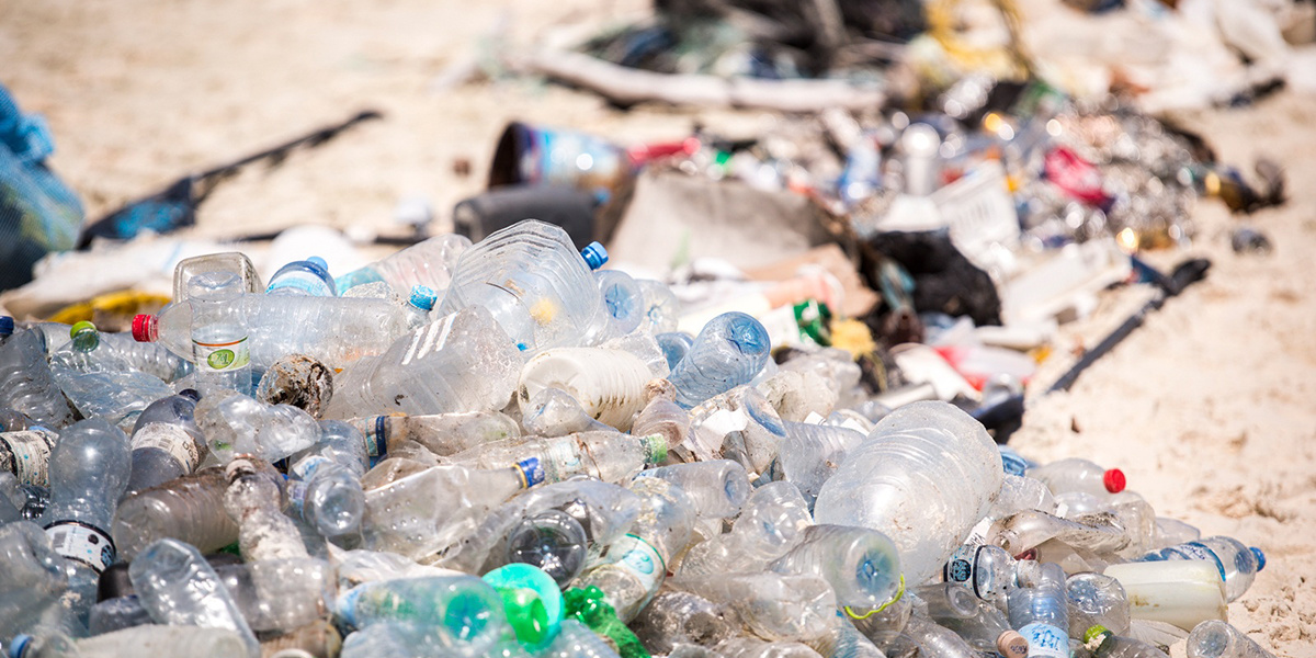 Plastics: The History of an Ecological Crisis