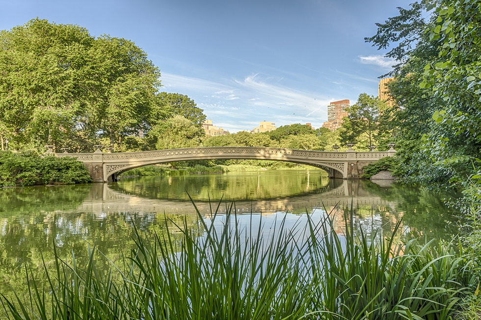 Bridge over the pond in Central Park