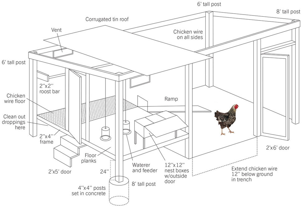 How to Build a Chicken Coop – Matter Of Trust