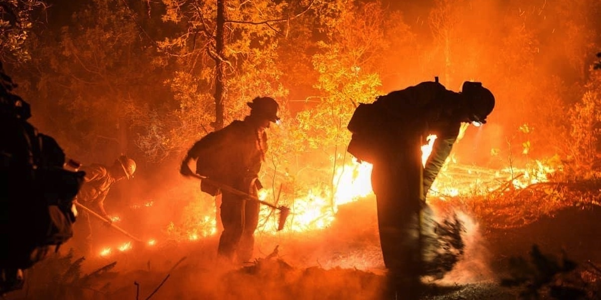 photo image Large Wildfires Scorch Forests in Drought-Stricken Southwest