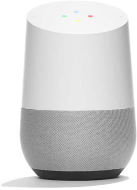 Google Home & Home Mini Works with Vivint
