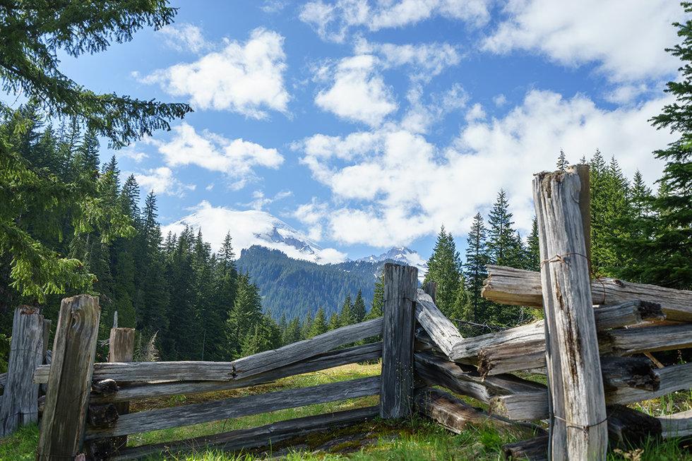 Mt. Rainer National Park