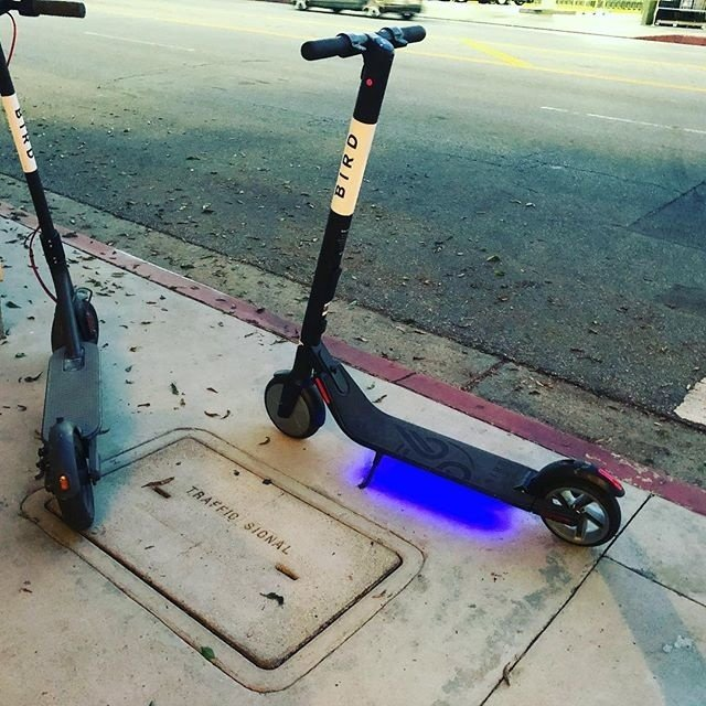 San Diego Rent Electric Scooter: Meet The Bird Cruiser, An Electric Bicycle Built For Two