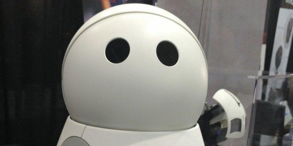Kuri robot mayfield robotics