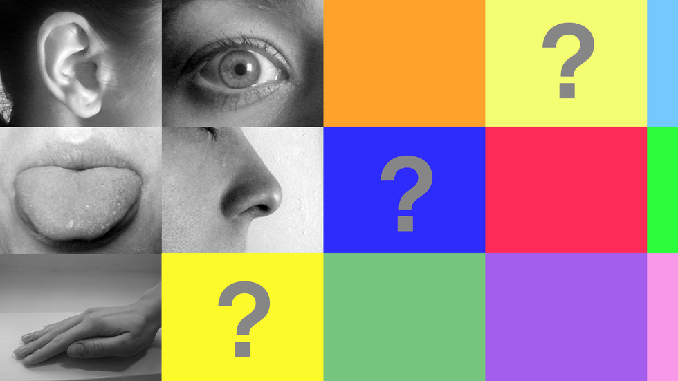 Think you have only 5 senses? You've actually got about 14 to 20.