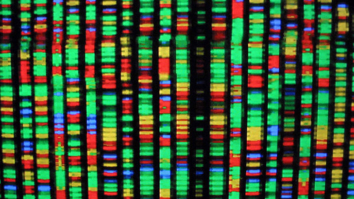 DNA's Hidden Layer Is Real, and Physicists Are Finding More Proof