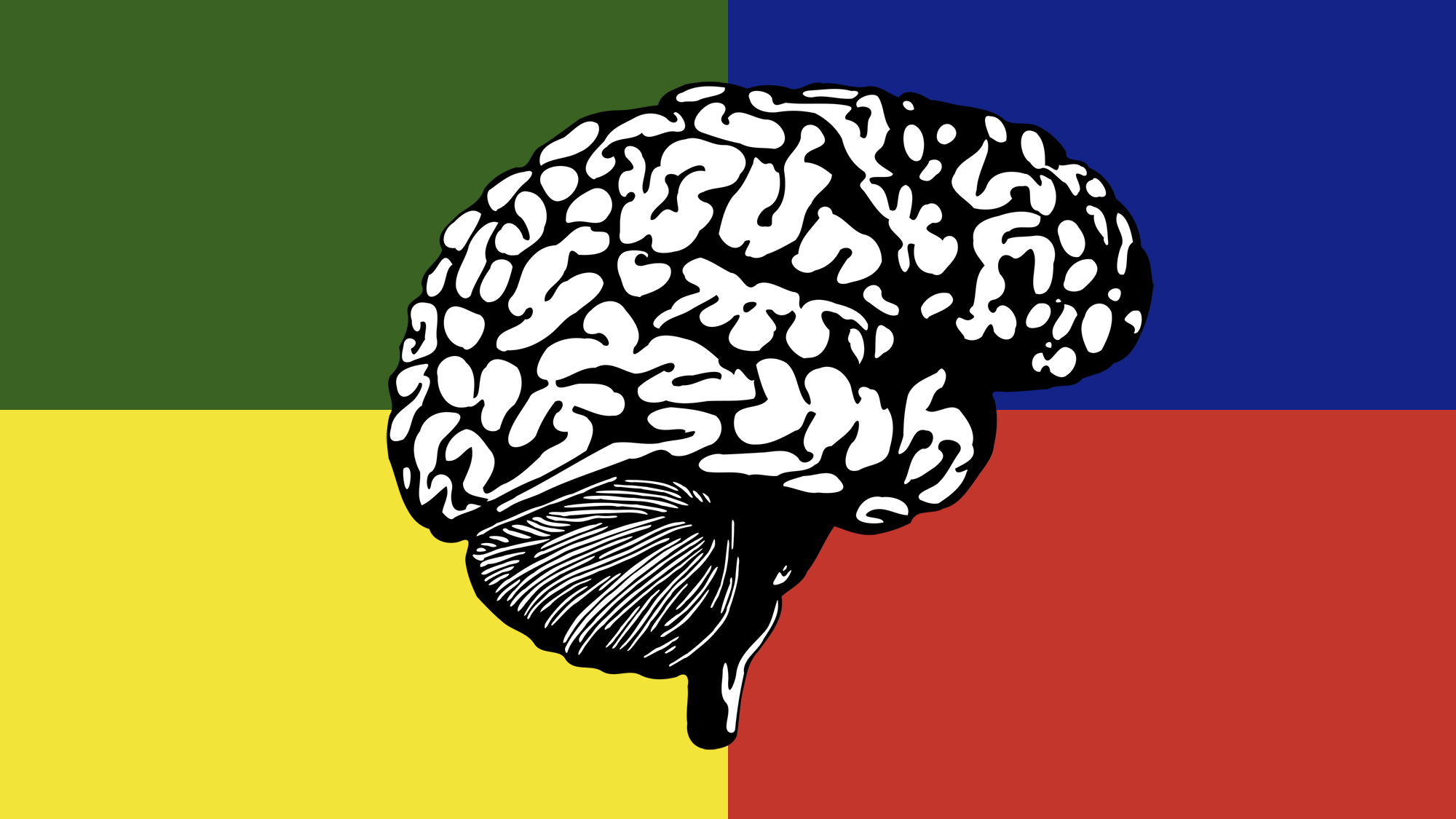How Your Personality Type Relates to 4 Brain Systems - Big Think