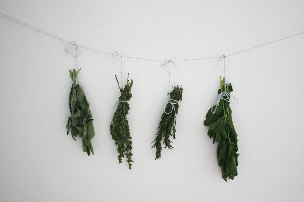 4 Pinterest-Worthy Ways To Make Herbs Last Longer