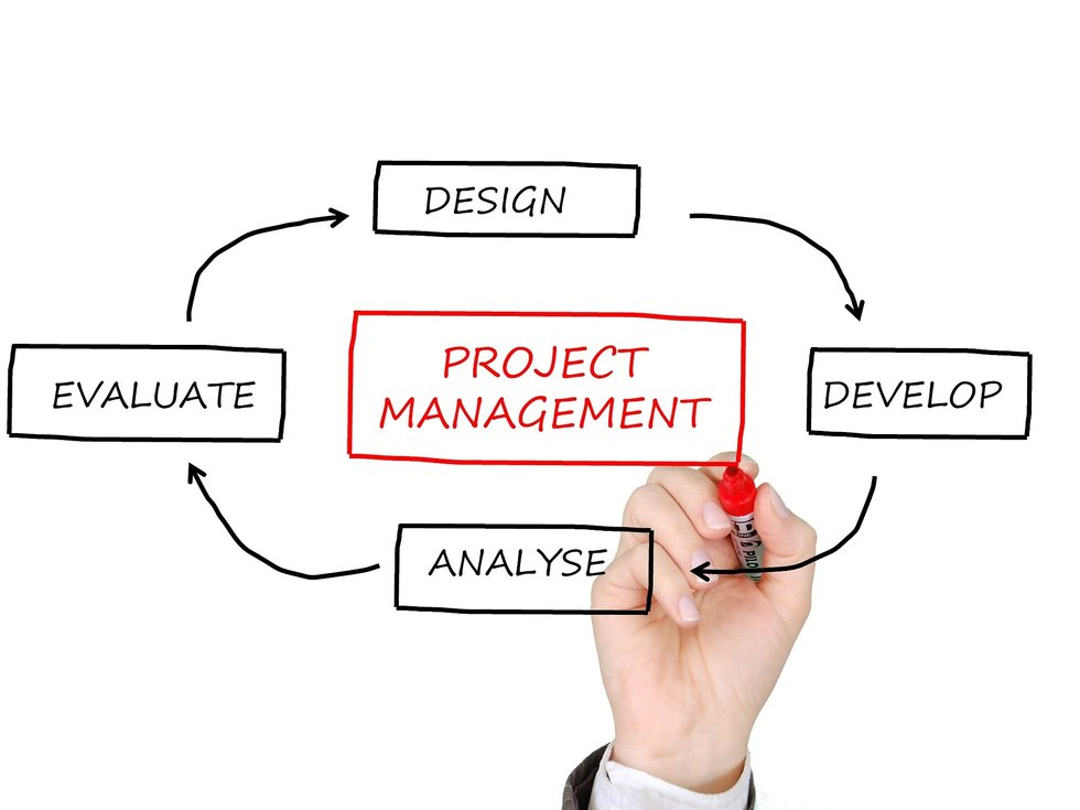 understanding the role of project management Project management is the practice of initiating, planning, executing, controlling, and closing the work of a team to achieve specific goals and meet specific success criteria at the specified time.