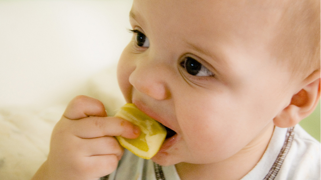 From Tongue to Brain: The Neurology of Taste - Big Think