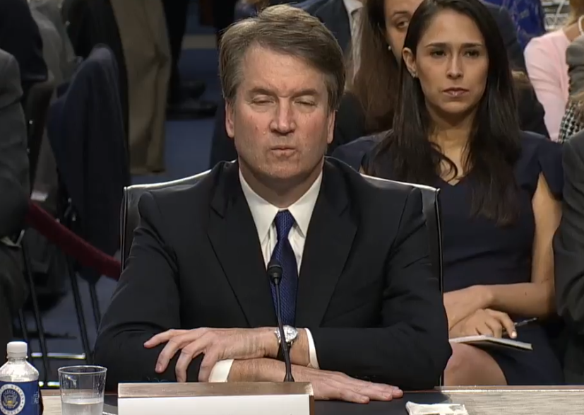 photo image Going Out On A Limb Here, But Brett Kavanaugh Is Kind Of A Dick