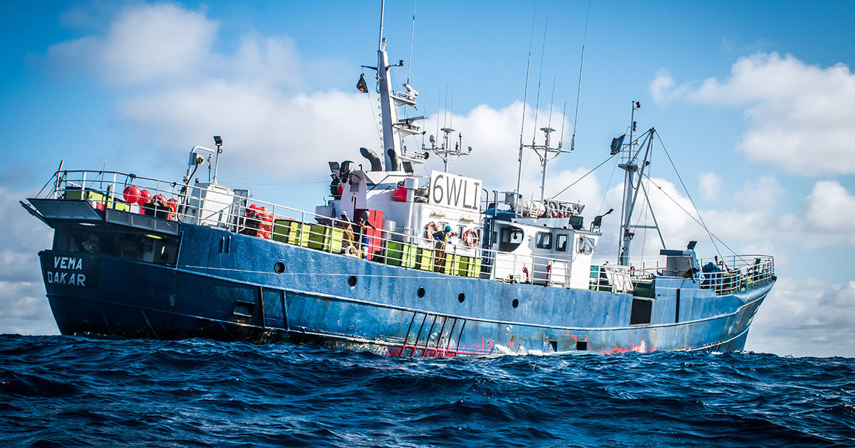 Commercial Fishing Vessel Busted in Africa for Shark Finning