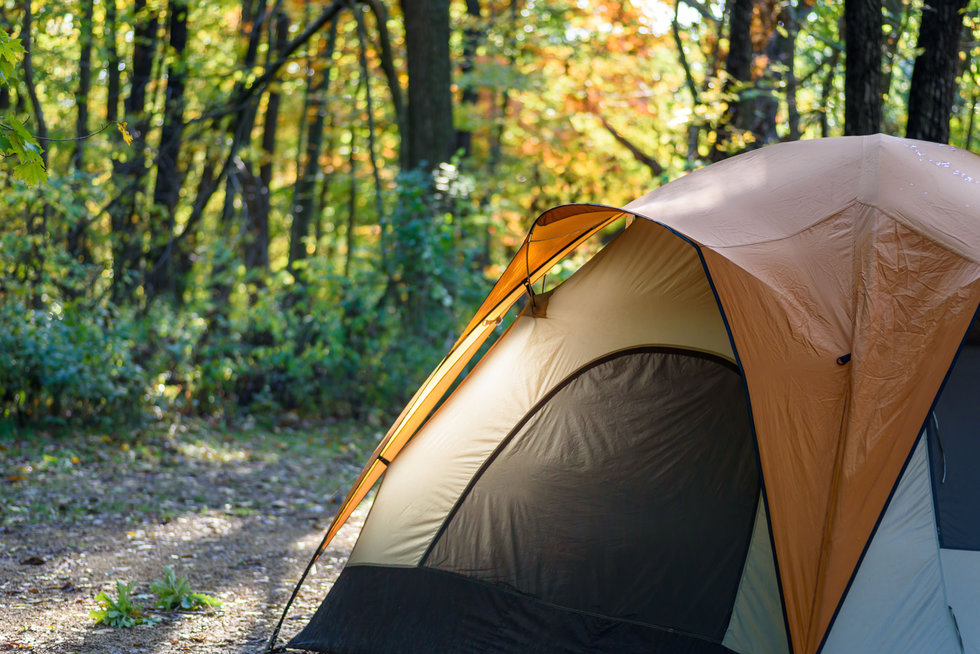 closeup of one tent in woods