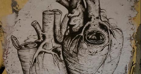 drawing of heart organ