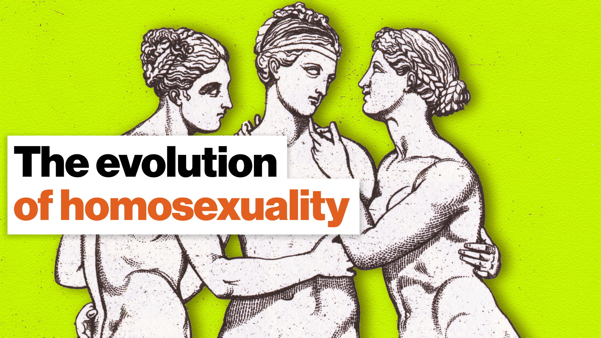 The evolution of homosexuality: A new theory