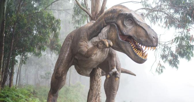 Unsplash- T rex statue