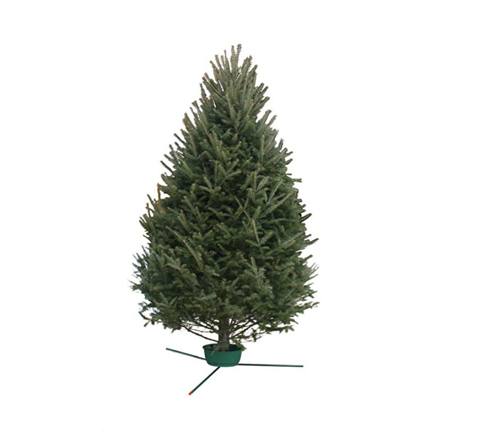 hallmark real christmas tree amazon 10999