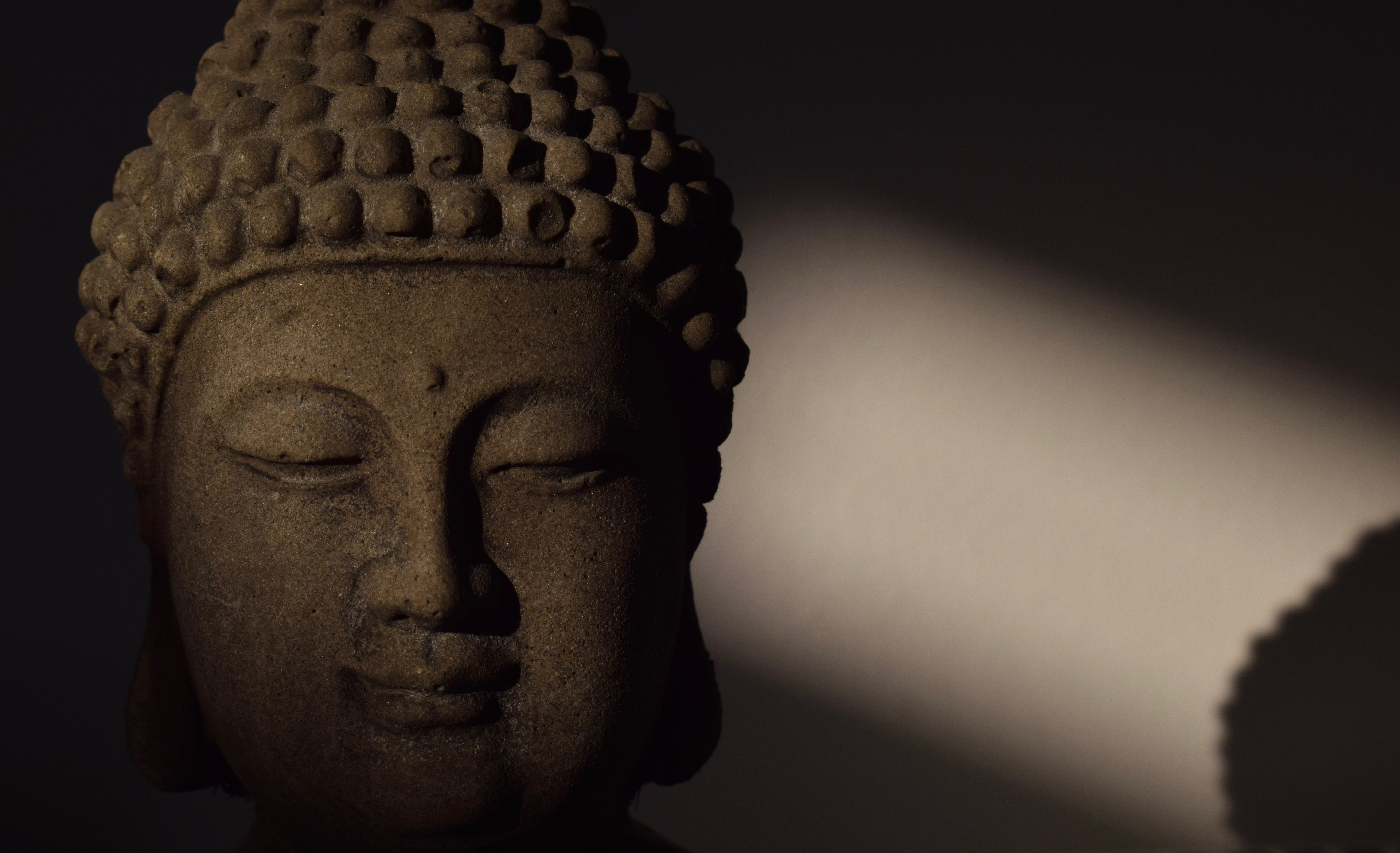 An end to suffering: 10 quotes on Buddhist philosophy