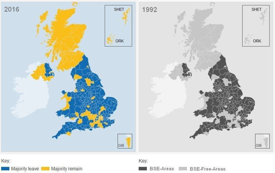 Brexit vs Mad Cow Disease map.