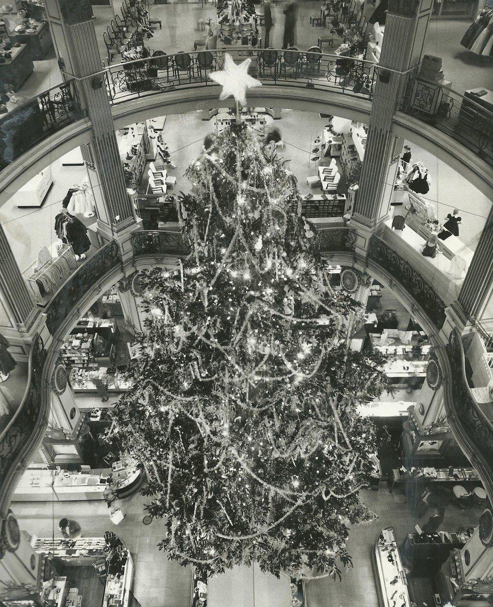 Christmas Tree Shops Union Nj