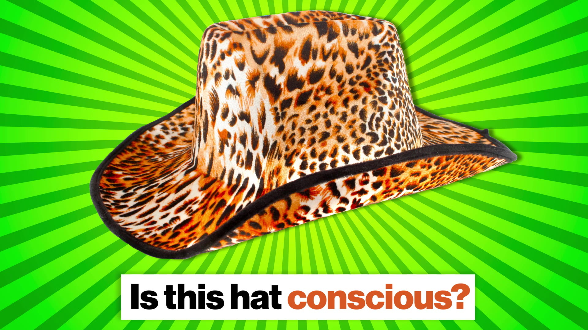 Consciousness, panpsychism, and AGI: What is it like to be a hat?