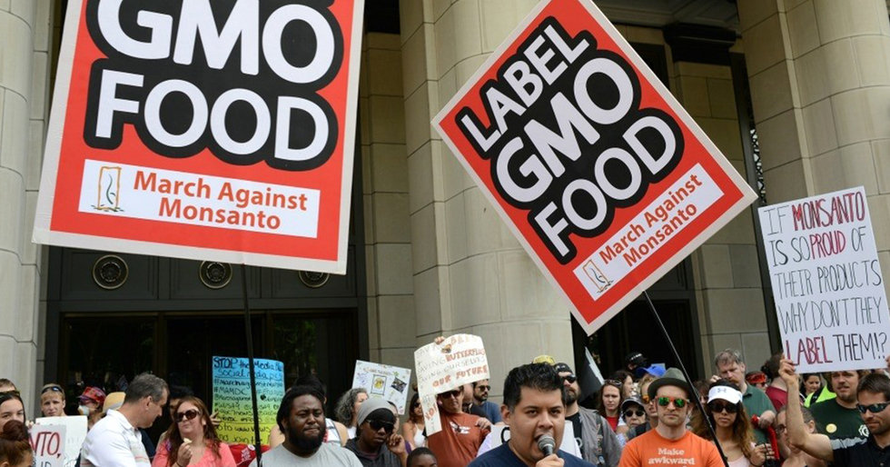'A Disaster': Critics Blast New GMO Labeling Rule From Trump's USDA