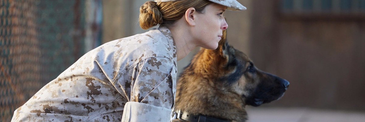 Megan Leavey Is A Good Iraq War Film  But Is It 'Stolen Valor