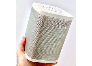 Riva Audio Concert Wireless Speaker