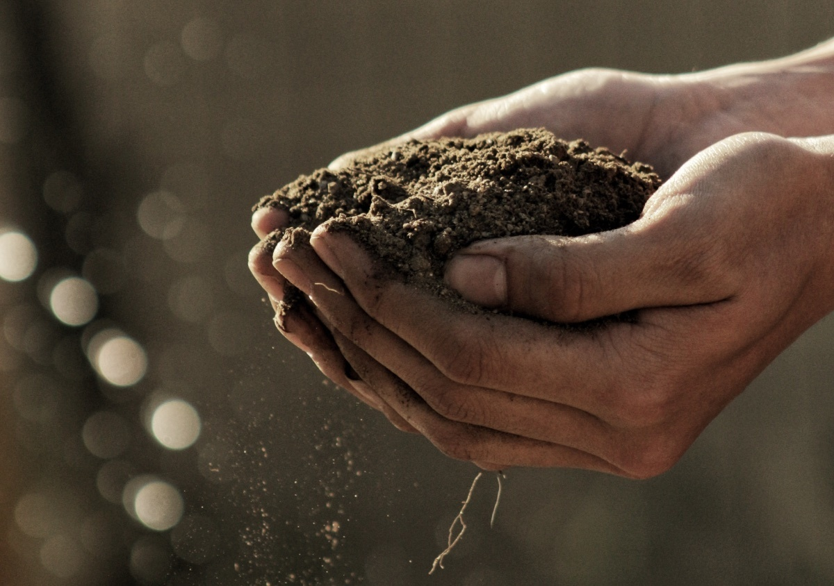 Does manual labor boost happiness?