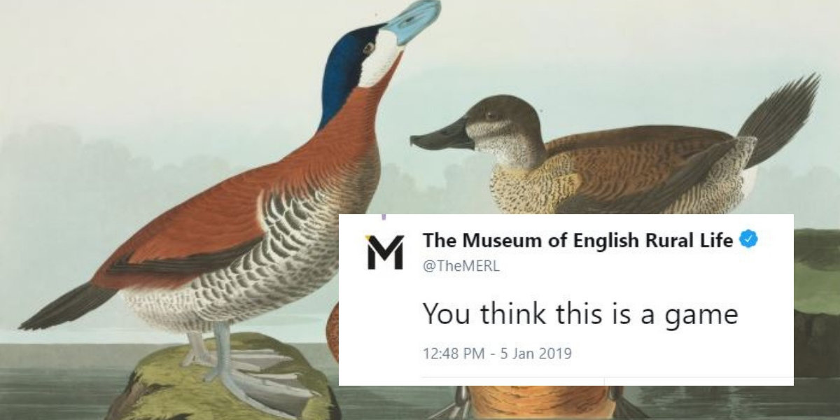 Museums Are Trying To One-Up Each Other With Pictures Of Ducks—And We're Quacking Up ????????