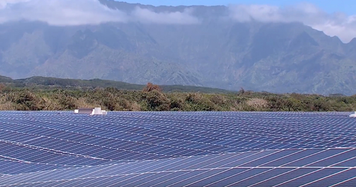 photo image World's Largest Solar + Battery Plant Unveiled in Hawaii