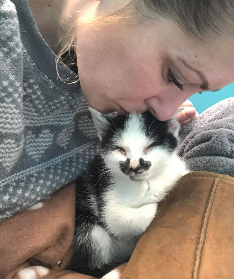 Woman Hears Blind Kitten Meowing to Her at Shelter and Can't Leave Him There