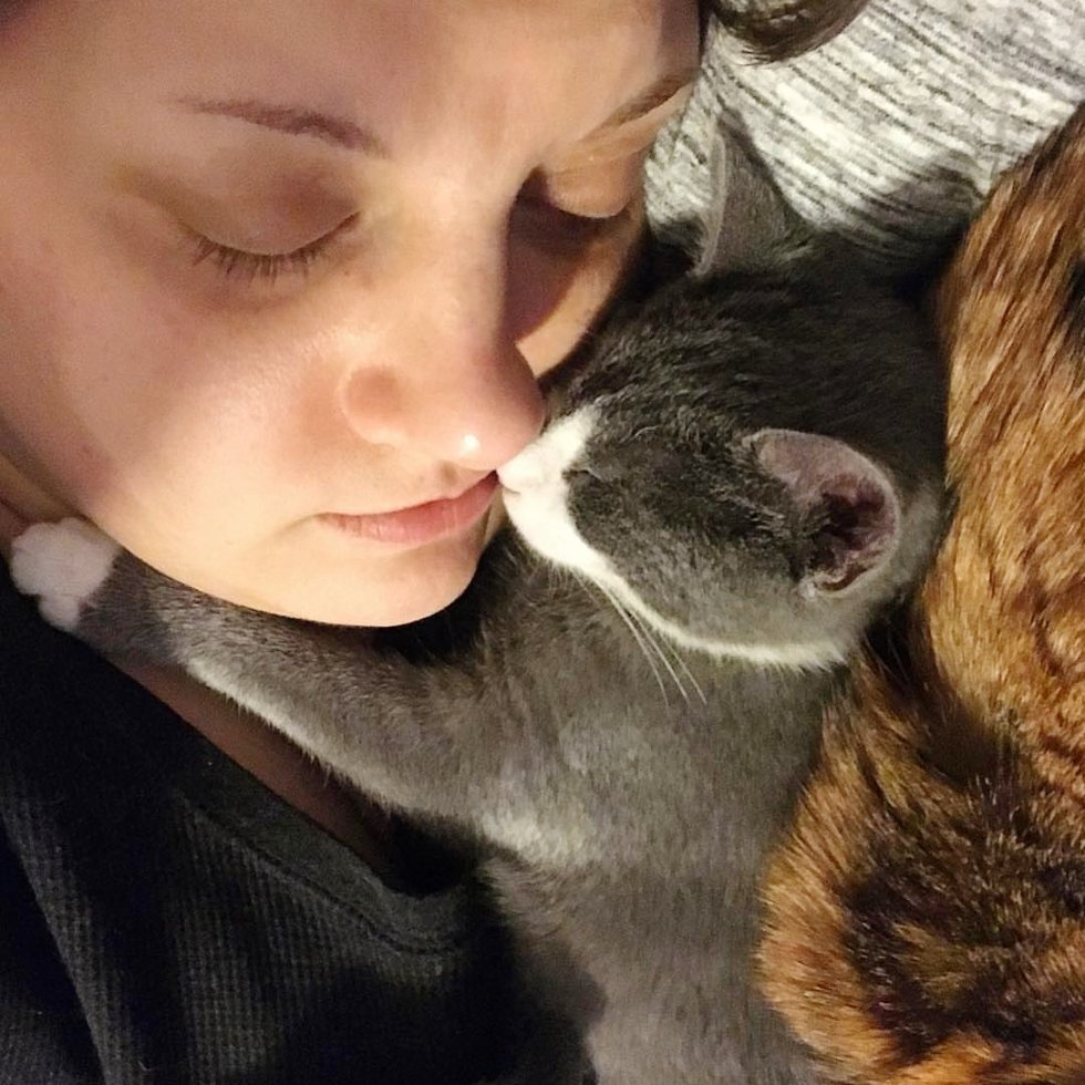 Kitten Showed Up on Porch All Alone – Woman Saved Him When No One Wanted Him