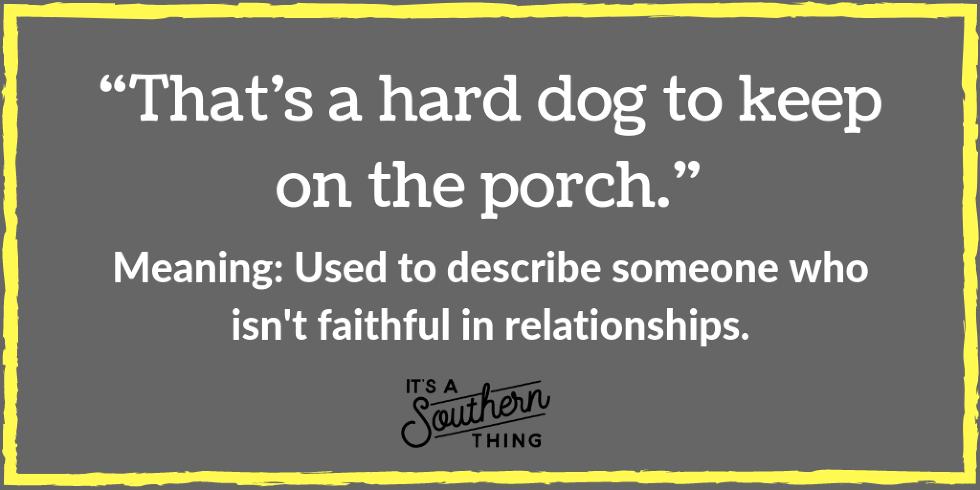 Sick As A Dog And Other Southern Phrases About Mans Best Friend