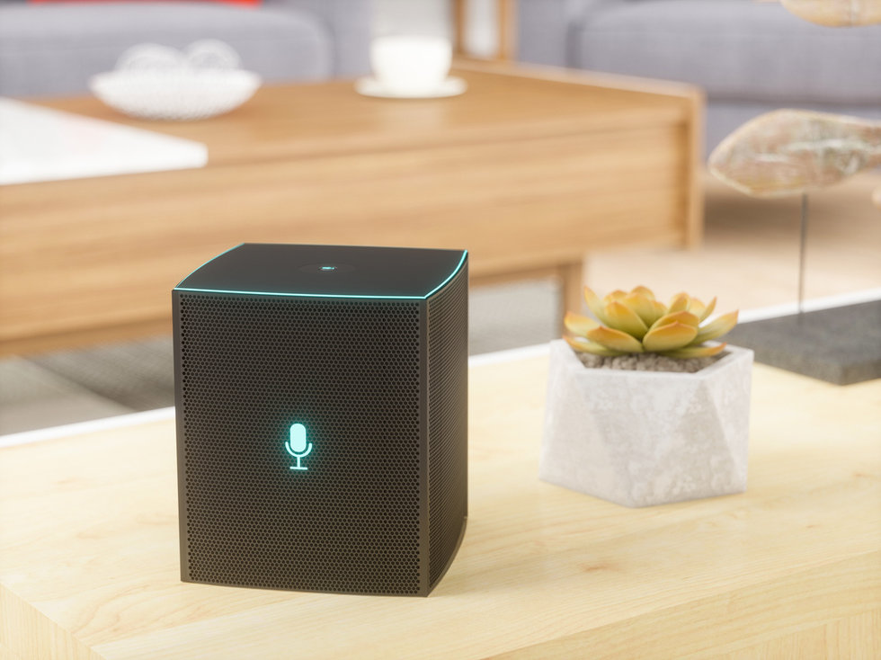 smart speaker home voice assistant loyalty