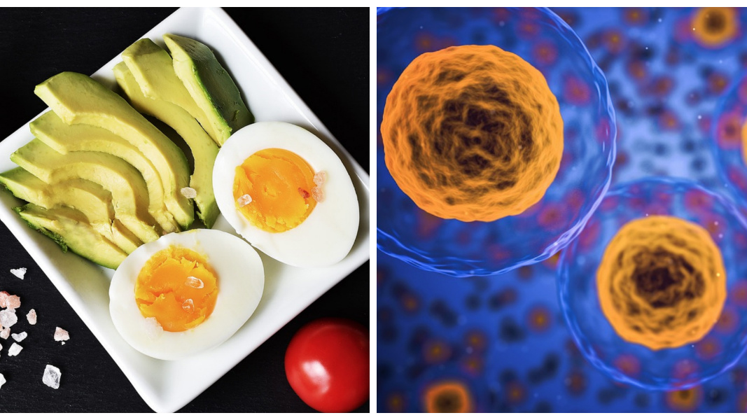 3 of the most speculative benefits of the keto diet
