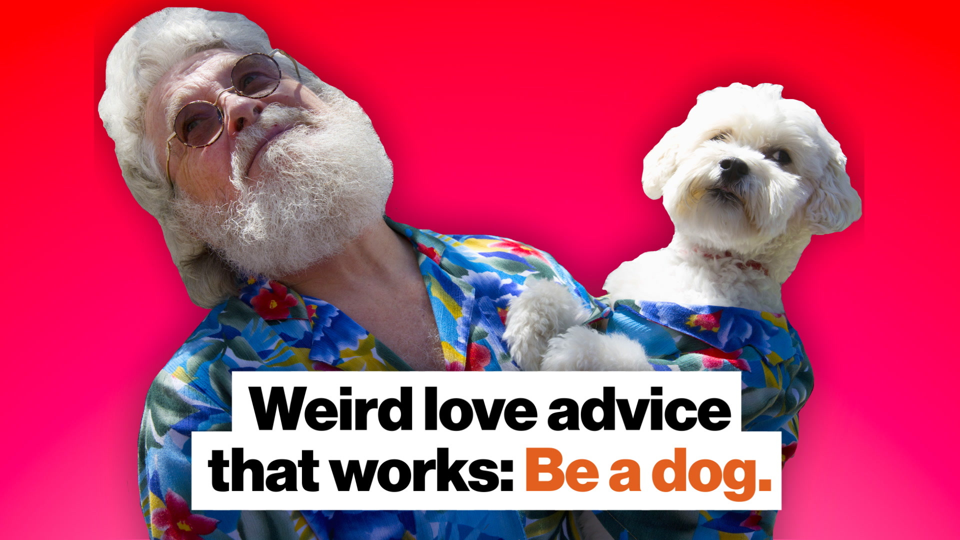 Weird love advice that works: Be a dog.