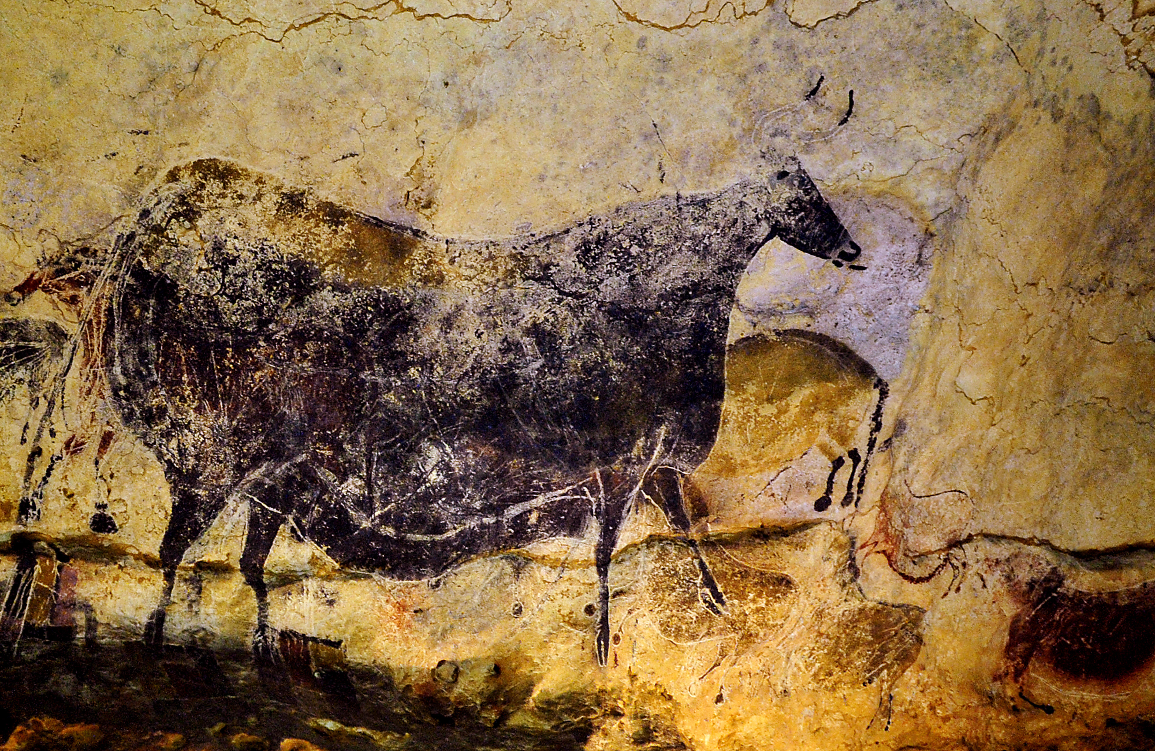 Did ancient cave artists share a global language?